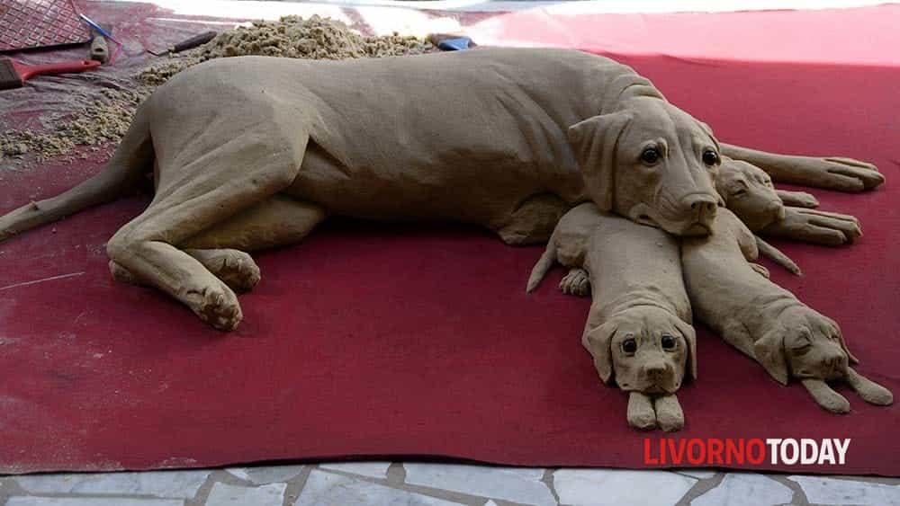 cane di sabbia (4)-2