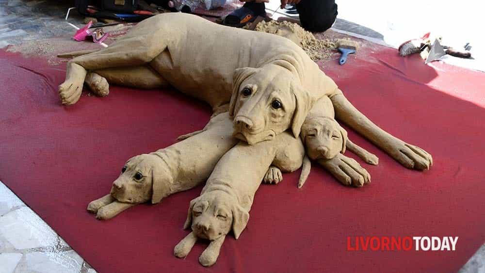 cane di sabbia (7)-2