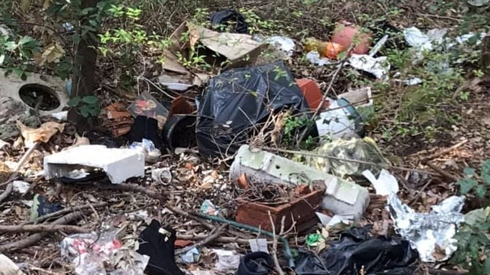 Alcuni rifiuti presenti sulla Panoramica di Montenero-2