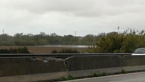piena fiume cecina (2)-2