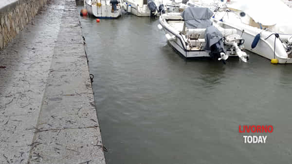 moletto antignano barche affondate-2