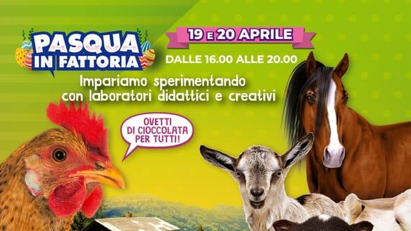 """""""Pasqua in fattoria"""", laboratori didattici alle Fonti del Corallo"""