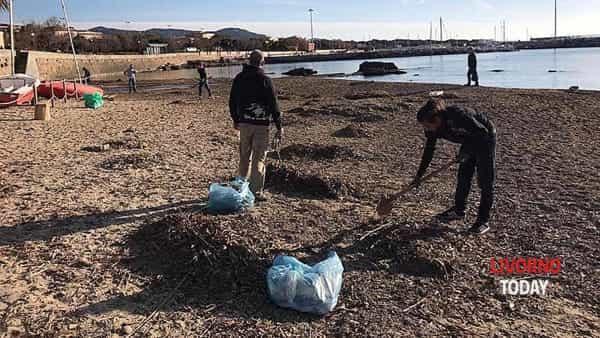 pulizia pirati plastica spiaggia felciaio cani (6)-2