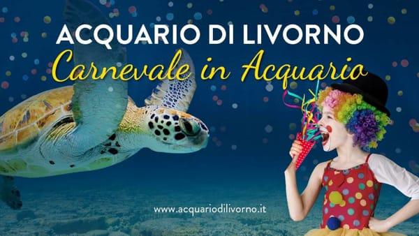 Carnevale 2019 all'Acquario: tutti gli appuntamenti